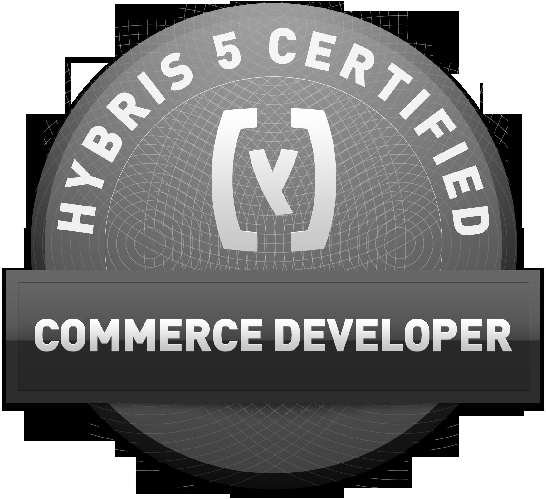 Hybris Ecommerce V5 Certification Soft Exploration Blog It
